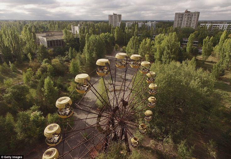 A ferris wheel stretches up into the skyline, where tall trees have grown unimpeded for almost three decades