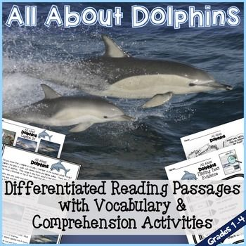 All About Dolphins includes everything you would need to work on vocabulary and…