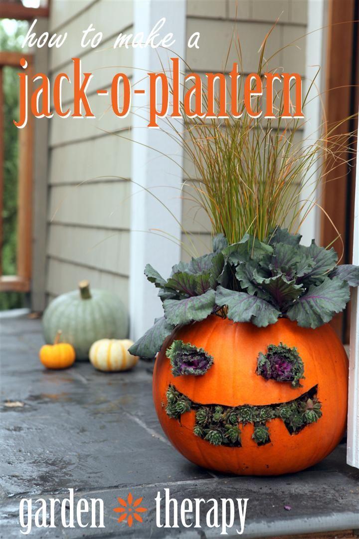 How to Make a Jack-O- Plantern