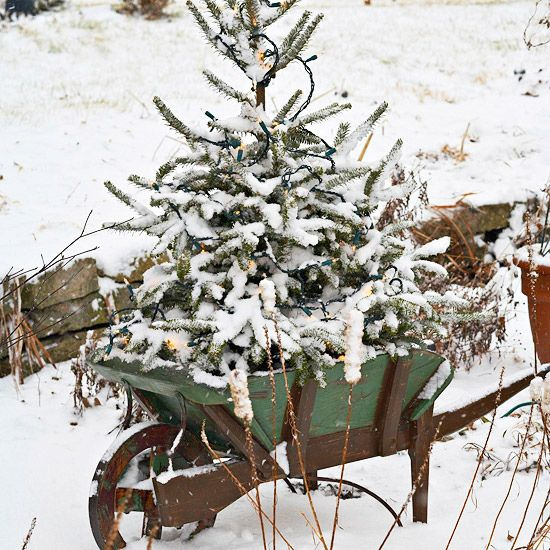 Wheelbarrow Lighted Tree