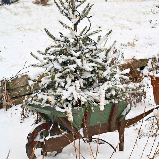 Wheelbarrow Lighted Tree