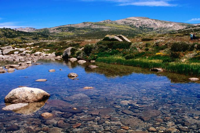 Snowy River below Charlottes Pass, with Mt Clarke in background, Kosciuszko National Park.