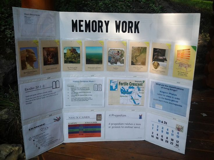 cycle 1 memory work trifold board i would like to do