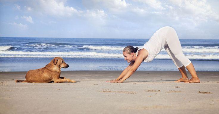 Yoga Urlaub auf Mallorca  /  Yoga & Wandern  – für Einsteiger  / Erlebe die Magie des Yoga und Mallorca von seinen schönsten Seiten.  Start up mit Yoga geht in jedem Alter … …und es gibt viele gute Gründe damit anzufangen.
