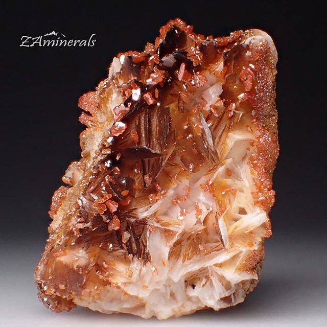 A beautiful cluster of #Vanadinite and #Barite crystals from #Morocco Custom Label: VH9 Store link in  bio #ZAminerals #RockOn #Crystals #Minerals #NoFilter #mineralcollector #RockCollection #RockShop #Geology #MineralsForSale #CrystalsForSale #crystal #crystallover #cristais #gem #igdaily #africancrystals