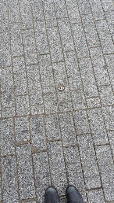 Halfsteensverband lange stenen, Rotterdam