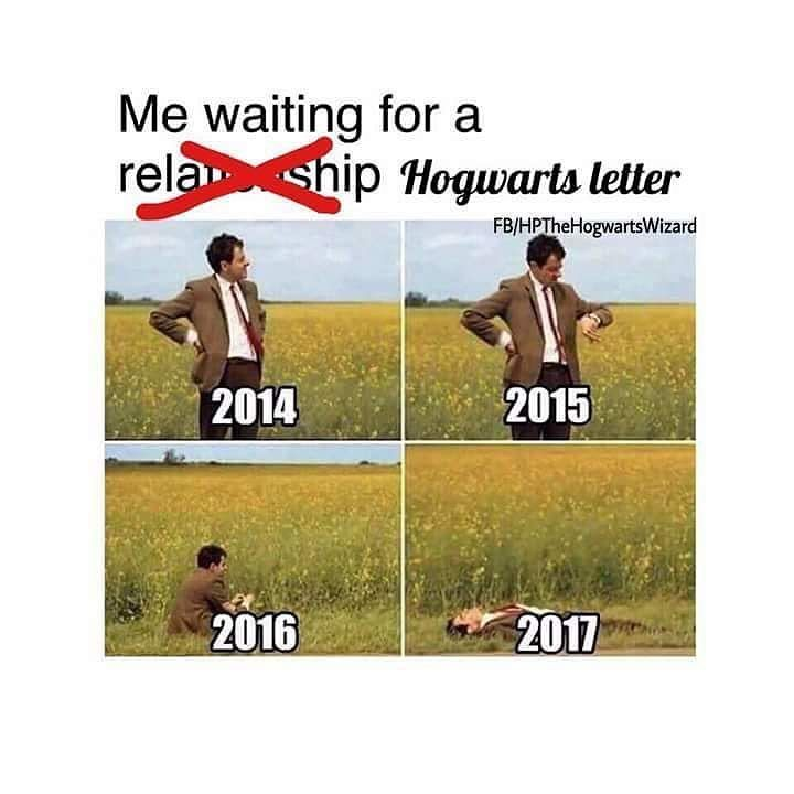 True�� Post number: 161 If you love Harry Potter then please follow for more like this and please like and comment what you think about my posts✨ And if you want to do a shoutout for a shoutout then please let me know ✨ . . . . . . . #harrypotter #hermionegranger #ronweasly #dracomalfoy #albusdumbledore #snape #lily #james #sirius #remus #hedwig #nevill #weaslys #fred #georg #crabbe #goyl #minerva #voldemort #tomriddle #bellatrix…