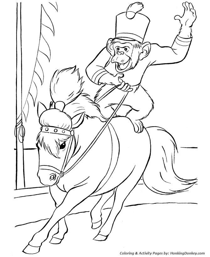Circus Coloring Page Horse And Monkey Embroidery Patterns