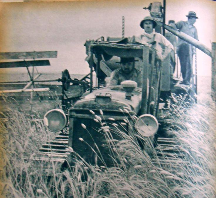 Máquina corta-trilla, con acoplado-depósito para el cereal. Tirada por el tractor en plena tarea en un campo de la provincia de Córdoba. Fuente: Revista M.A.N. nº 46-47, 1941 (Enero-Febrero)