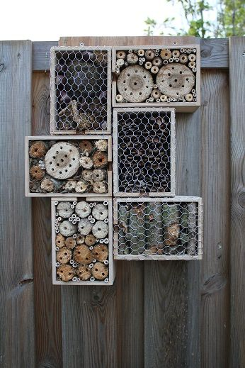 25 best ideas about wooden wine boxes on pinterest wine for Wooden wine box garden
