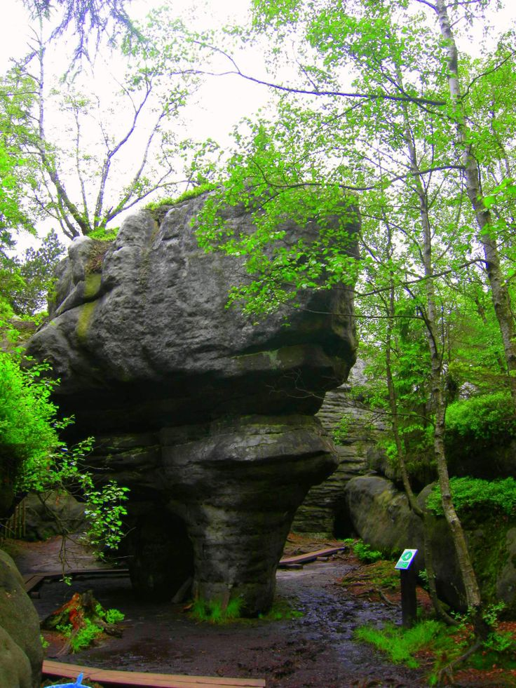 Góry Stołowe, Poland.