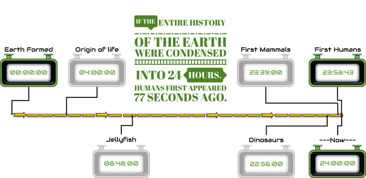 Week 2 Assignment. A visual highlighting how long humans have been around in comparison to the history of planet earth