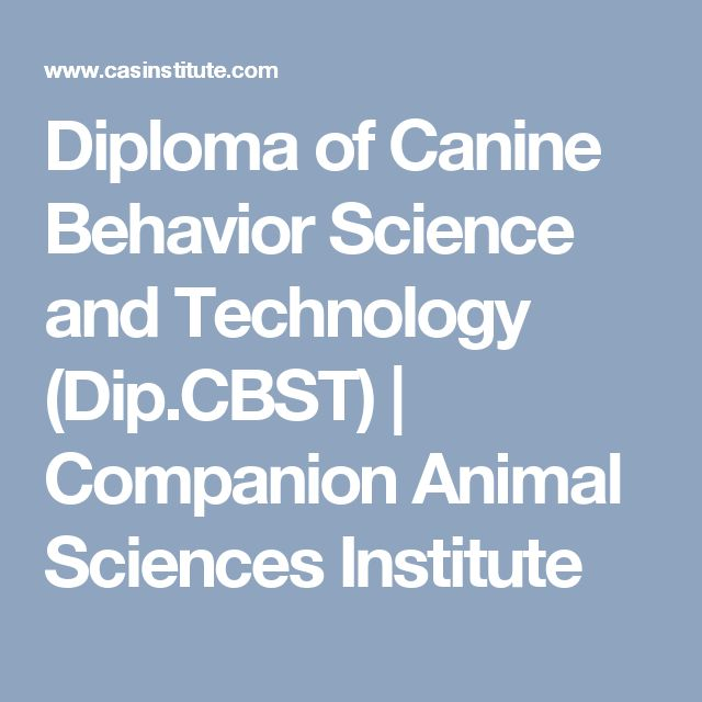 Diploma of Canine Behavior Science and Technology (Dip.CBST) | Companion Animal Sciences Institute