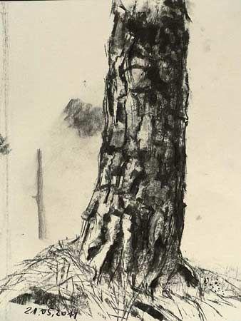24 + Ideen Zeichnung Holzkohle Landschaft Baum Kunst