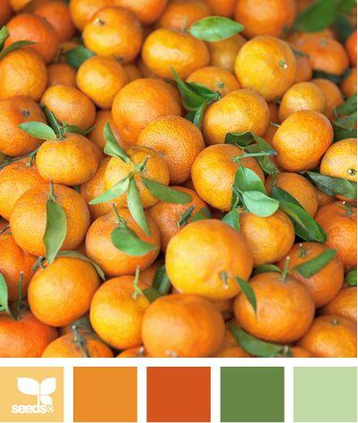 Color: Color Picked by Design Seeds - light orange, tangerine, deep orange, medium green, light green.