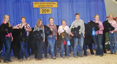 Members of the Aldermere Achievers 4-H Club of Rockport and their cattle attended the National Belted Galloway Society's National Youth Show in Louisville, Kentucky, on November 15, and three of the four top awards at the show were won by Achievers.