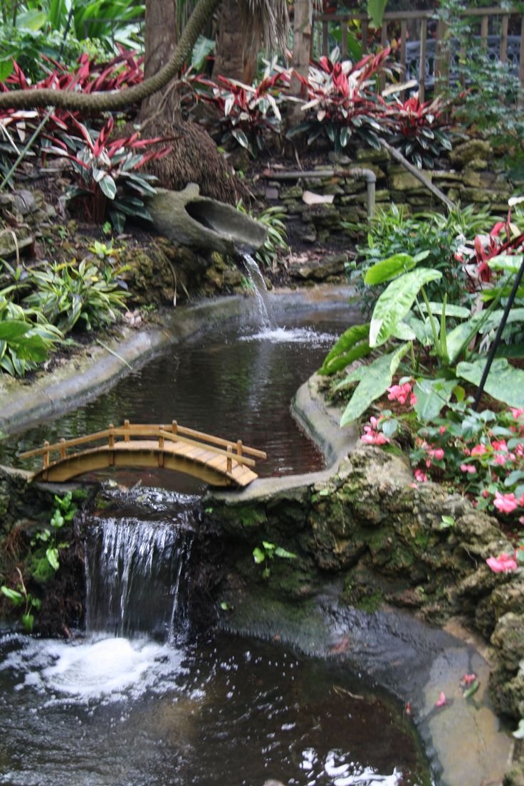 Sunken Gardens St Petersburg Florida With All The Gorgeous Flowers And Exotic Birds Places