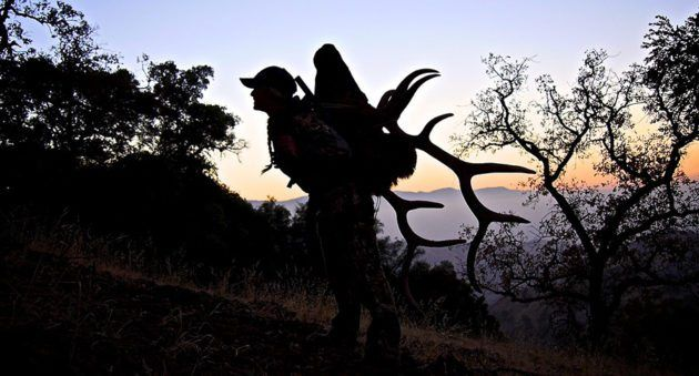 Here's Some Great General Elk Hunting Tips From Kristy Titus