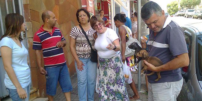 Cães abandonados são salvos e encontram um lar - http://projac.com.br/noticias/caes-abandonados-sao-salvos-encontram-lar.html