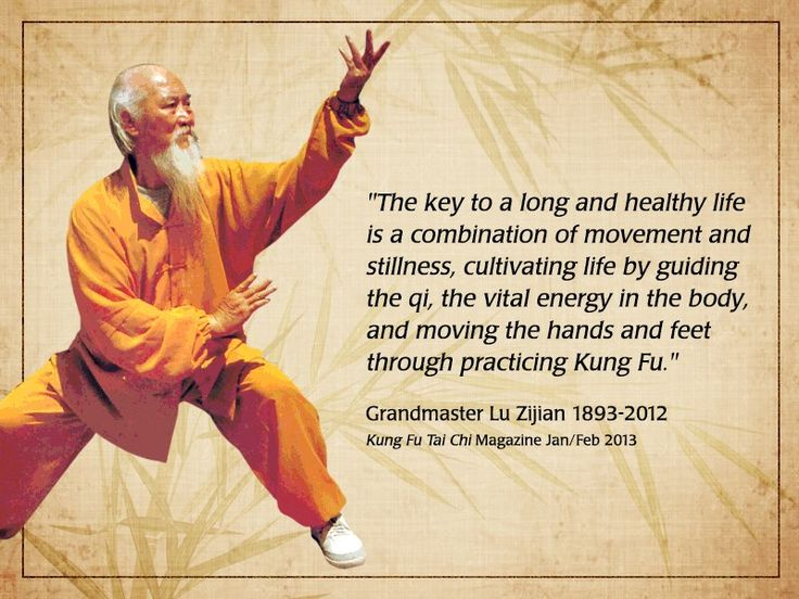 "Grandmaster Lu Zi Jian - ""The key to a long and healthy life is a combination of movement and stillness, cultivating life by guiding the qi, the vital energy in the body, and moving the hands and feet through practising Kung Fu"""