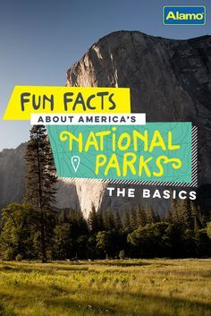 In honor of the 100th anniversary of the U.S. National Park Service, Alamo is sharing 100 fun facts ranging from interesting to downright bizarre. Here are the first 12 things you may not know about NPS.