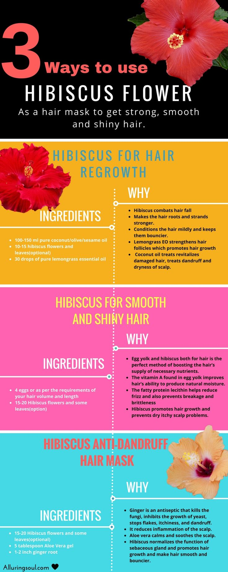 Hibiscus for hair - Regrowth, strong and shiny hair. Hibiscus is a beautiful flower which is very effective for treating hair problems.