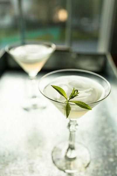 Lemon Verbena Gimlet Cocktail