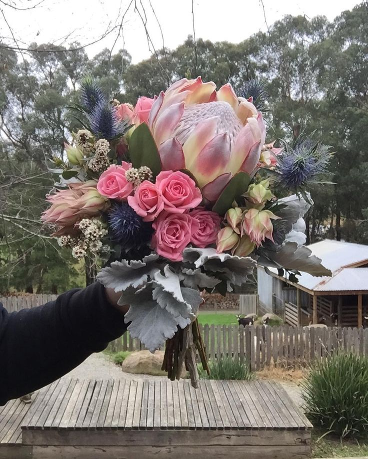 King Protea's in action! #weddingflowers #florist #floristry #kingprotea #pink #rose