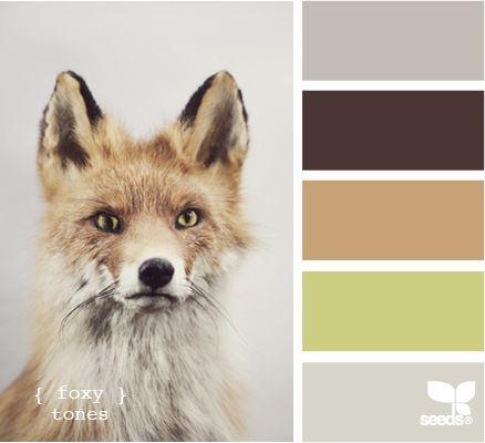 Fox inspired Color scheme