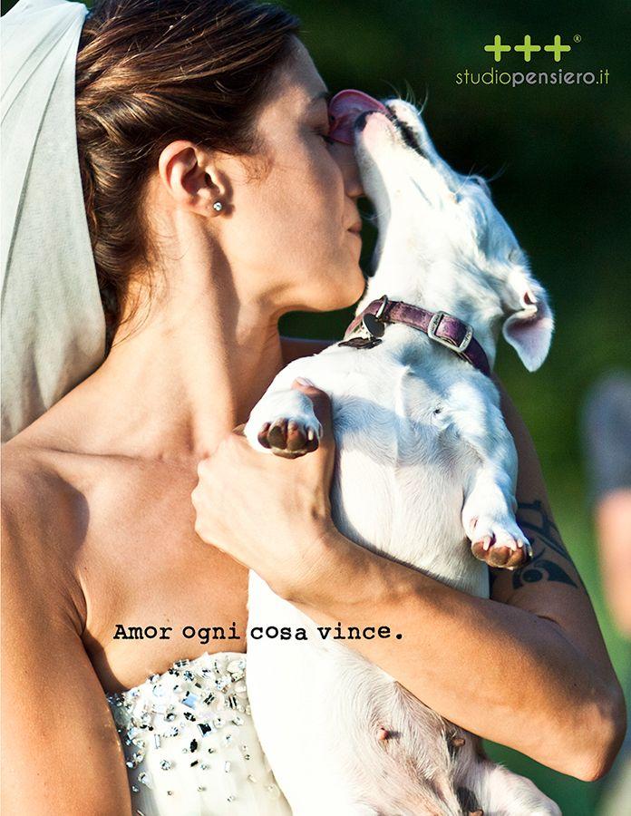 Amor ogni cosa vince.  THINK - LOVE  www.studiopensiero.it