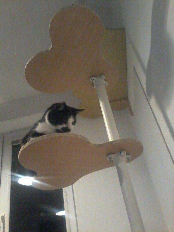 17 Best images about Inspirace ikea cat stolmen on ...