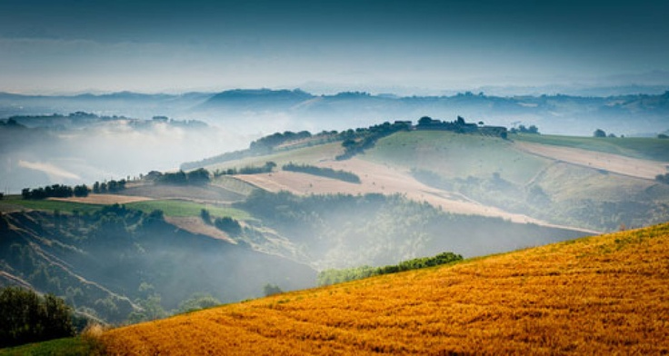 Hidden Europe... Le Marche, Italy, Le Marche only feels remote-it's actually a central destination in Italy, and one to keep on your radar. Its unusual name comes from the March of Ancona, a medieval political division of the Papal States. The landscape here calls to mind the ever-popular (though sometimes pricey and overcrowded) Tuscany, which lies to the northwest. / www.wildcanadasalmon.com