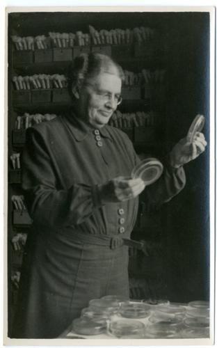 0285-6449 | Johanna Westerdijk bij de verzameling van het Centraal Bureau voor Schimmelcultures