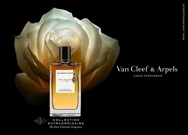 Photo: www.antoine-picard.net Flacon Rose Velours de Van Cleef & Arpels en clair-obscur