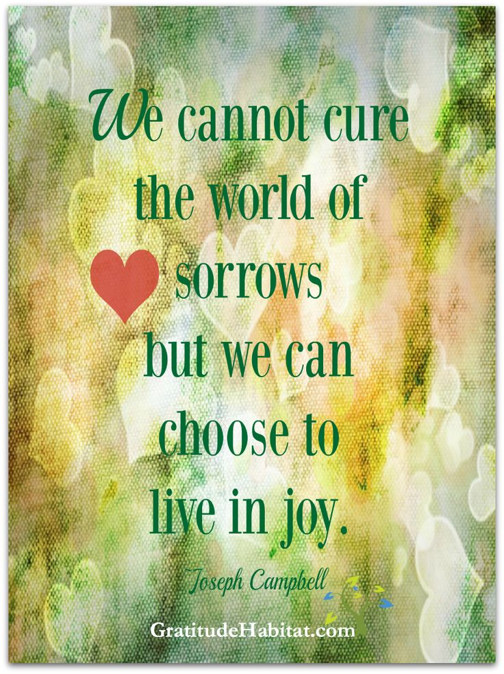 Choose to live in joy. Visit us at www.GratitudeHabitat
