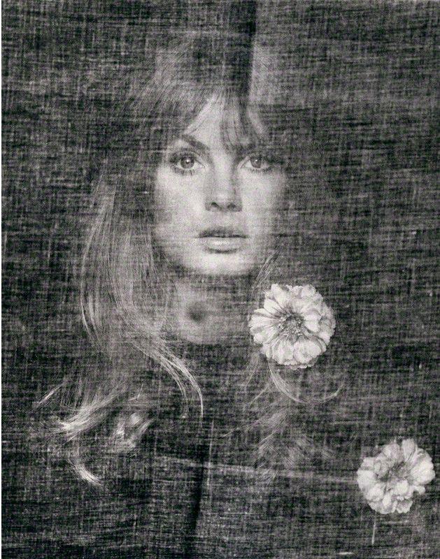 David Bailey: Jean Shrimpton, 1969 (bromide print).