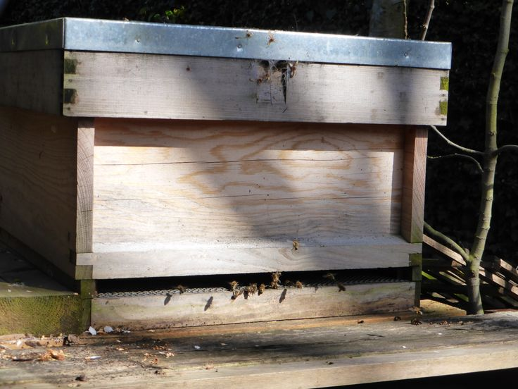 One of our two bee hives in our garden.  www.lynwood-house.co.uk
