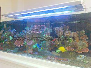 Jual Filter Aquarium AirLaut
