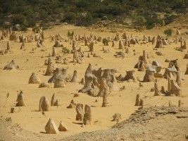 The Pinnacles Desert Park