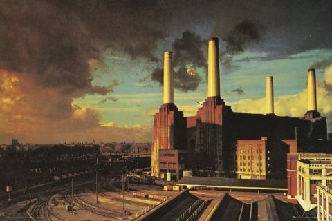 plakat PINK FLOYD - ANIMALS