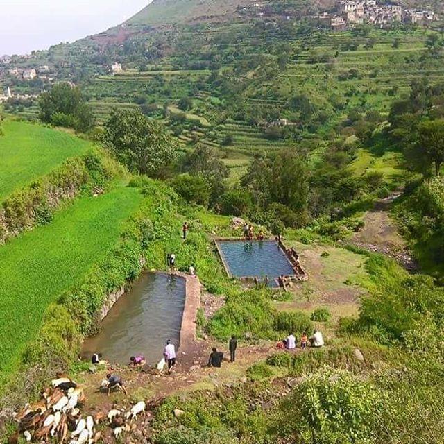 هذا مش باريس ولندن وتركيا وماليزيا وإندونسيا هنا اليمن مناظر من بلاد الطعام اليمن ريمة انت لا تعرف اليمن Yemen Beladat3am Golf Courses Field