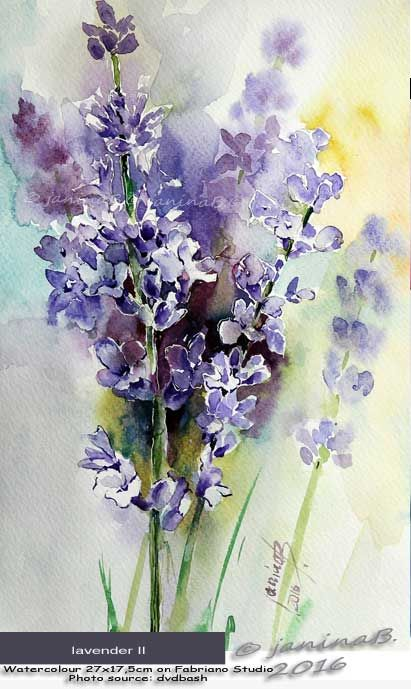 lavender II / Watercolour 27x17,5cm on Fabriano Studio © janinaB. 2016