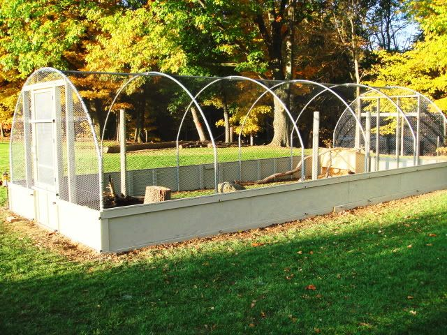 52 best images about chicken and duck pens on pinterest for How to build a duck pen