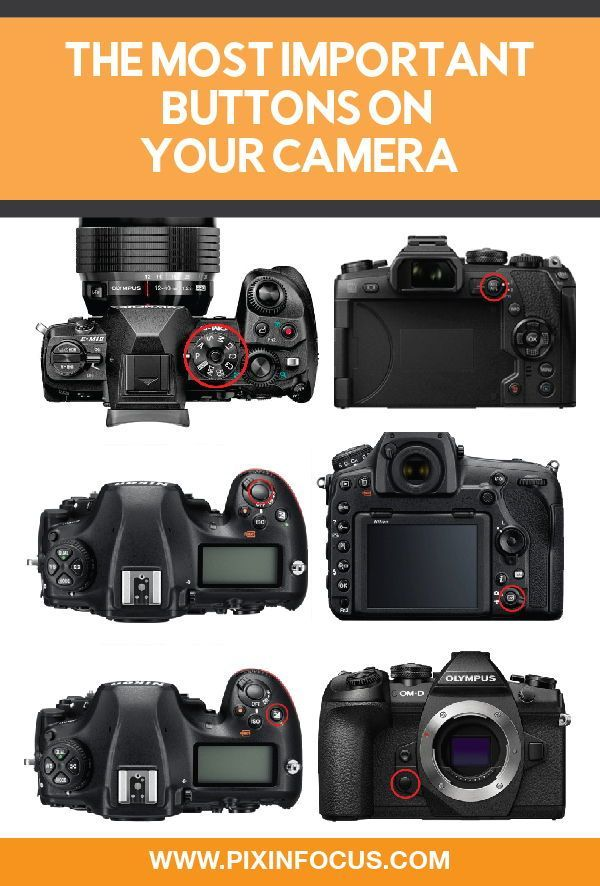 The Most Important Camera Buttons Explained Pixinfocus In 2020 Camera Dslr Photography Camera Accessories