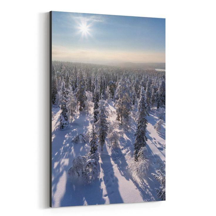 Noir Gallery Lapland Finland Winter Forest Canvas Wall Art Print (12 x 18), Green