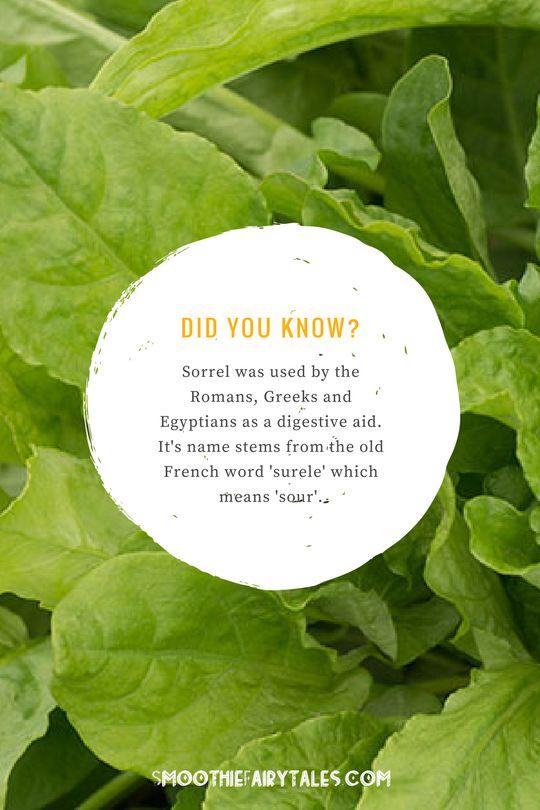 sorrel health facts