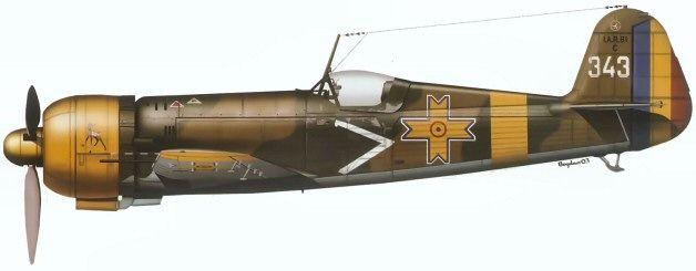IAR 81C no. 343 of Escadrila 62, Grupul 6 Vânãtoare.  This aircraft was flown by lt. av. Tache Baciu and carried a Bambi emblem on the cowling.