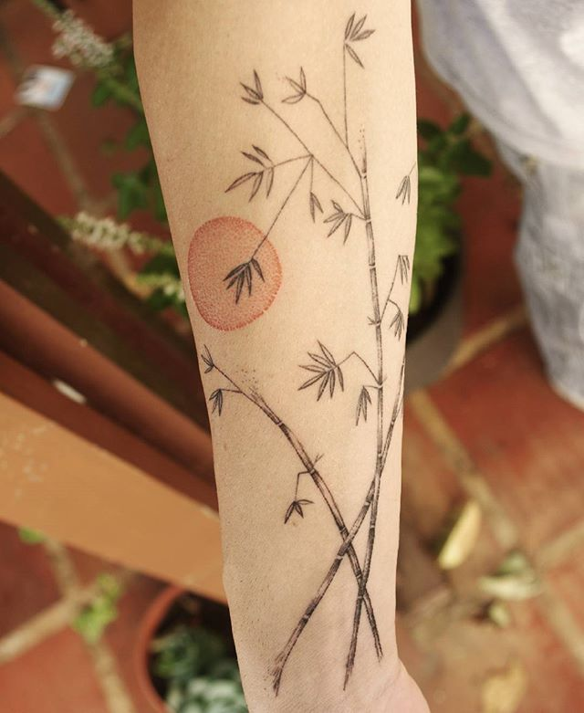 #tattoos #tattooart #tattoobrasil #lineworktattoo #fineline #dotworktattoo #pontilhismo #bambu #bamboo #bambooart #bambootattoo #suntattoo #sunsettattoo #botanicaltattoo #naturetattoo #femaletattooartist #tatuajes #tattoo2me #tattoolife #tattoolife #equilattera #dotworktattoo #tattrx #tattooartistmagazine #tattoodelicada