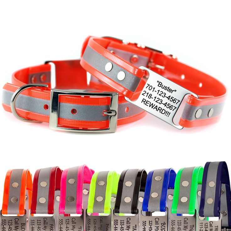Reflective ScruffTag Dog Collar for safe night-time walks with your pet.  Personalized reflective dog collars with built-in ID tags that don't jingle. Lifetime warranty and made in USA!