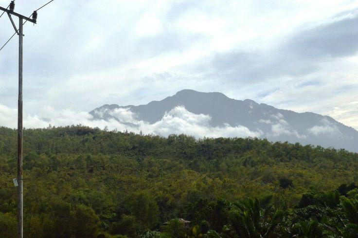 Gunung Siklop di pagi hari. Jayapura, Papua